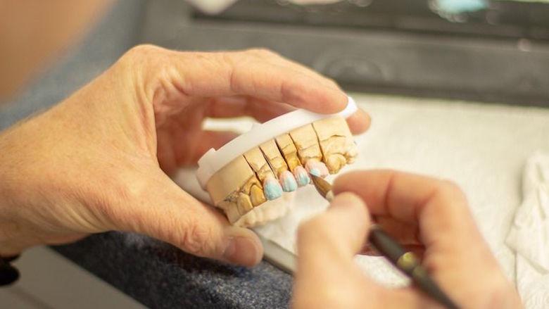 Diş Protez Laboratuvarları da Torbada